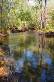 Вода 5 NT Стоковое Фото