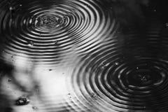 Вода Striders с волной стоковая фотография