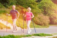 Во всю длину усмехаясь пожилой семьи тратя время outdoors Стоковое фото RF