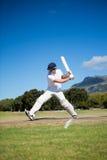 Во всю длину отбивающего мяч играя на поле против неба Стоковые Изображения