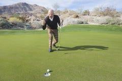 Во всю длину старшего мужского игрока в гольф празднуя тонуть удар, загоняющий мяч в лунку на поле для гольфа Стоковые Фотографии RF