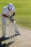 Во всю длину шарика wicketkeeper заразительного за пнями на поле стоковая фотография