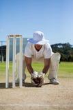 Во всю длину wicketkeeper держа шарик за пнями стоковые изображения rf