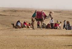 Водитель верблюдов, Гиза, Каир, Египет Стоковое Фото