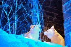 2 волка снега плюша, украшения Стоковое Фото