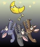 Волки завывая на луне Стоковое Изображение