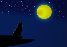 Волк завывая на полнолунии на ноче Стоковая Фотография RF