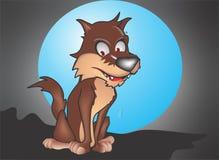 Волк Стоковая Фотография