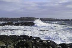 Волна встречает утес Стоковые Фото