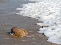 Волна и камень на пляже Стоковые Изображения RF