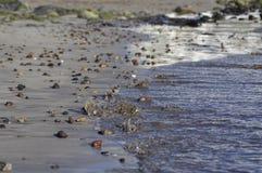 волна моря камушка пляжа Стоковые Изображения