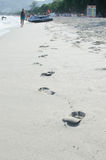Волна на пляже Стоковые Фотографии RF