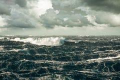 Волна Стоковые Фото