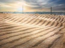 Волнистое скошенное пшеничное поле Стоковое Изображение