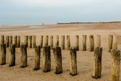 Волнорезы на пляже на заходе солнца Стоковые Изображения RF