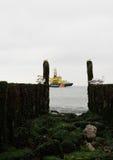 Волнорезы с чайками на береговой линии Северного моря Стоковое Фото