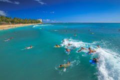 Водные виды спорта в Гаваи Стоковое Изображение