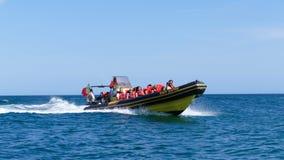 Водные виды спорта на празднике - Jetboat Стоковое фото RF