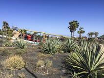 Водные горки в акватическом парке потехи Стоковые Фото