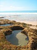 Водный бассейн с в форме рыб стоковое изображение rf