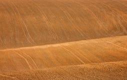 Волны земли Стоковая Фотография