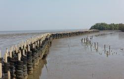 Волны моря барьера Стоковое Изображение RF