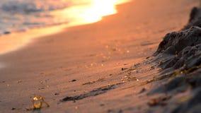 Волны на песчаном пляже на заходе солнца видеоматериал