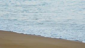 Волны на песчаном пляже акции видеоматериалы