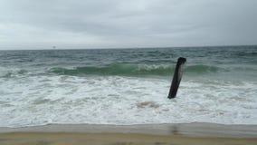 Волны свертывая на пляж видеоматериал