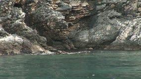 Волн лапландец равномерно против скалистой береговой линии акции видеоматериалы