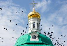 Водоворот стада птиц на куполе Стоковая Фотография RF