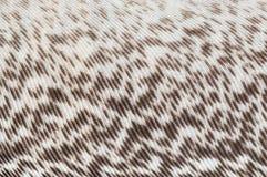 волокна Стоковая Фотография