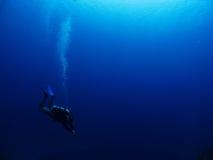 водолаз Стоковые Изображения