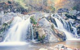 Водопад во времени и древесинах осени Стоковая Фотография RF