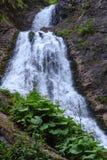 Водопад вуали невесты Стоковые Фото