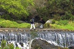 Водопад в ландшафте горы, остров Мадейра Стоковое фото RF