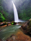 Водопад в Бали, Индонезии Стоковое Фото