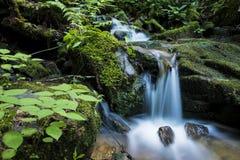 Водопад в больших закоптелых горах Стоковая Фотография