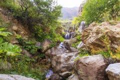 Водопад в горах около деревни Griz Guba Azerbai Стоковые Изображения RF