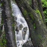 Водопад в горе вашгерда Стоковое Изображение RF