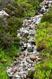 Водопад в гористой местности Стоковые Фотографии RF