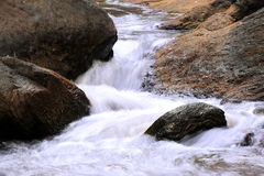 Водопад в глубоком лесе на предпосылке национального парка Стоковые Фото