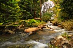 Водопад в лесе, глубокий водопад леса в Таиланде Стоковое фото RF
