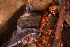 Водопад в лесе осени Стоковые Изображения RF