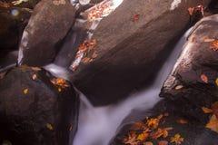 Водопад в лесе осени Стоковое Изображение
