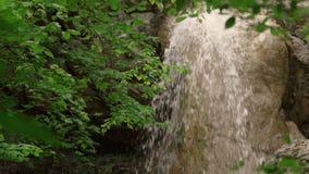Водопад в лесе среди утесов сток-видео