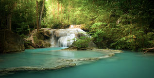Водопад в лесе с лучами и лучами солнечного света через деревья Стоковое Изображение RF