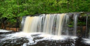 Водопад в лесе Стоковое Изображение RF