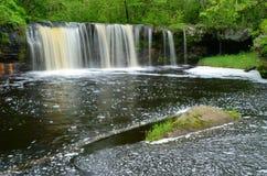 Водопад в лесе Стоковая Фотография RF