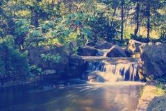 Водопад в лесе Стоковое фото RF